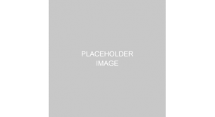 Gallery Image: placeholder.png